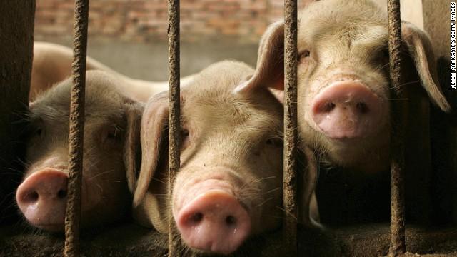 Guvernul chinez dezvăluie proiectul listei de animale care pot fi crescute pentru carne