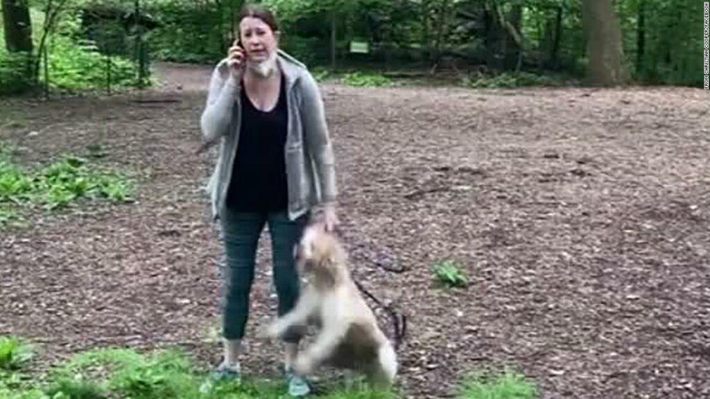 Amy Cooper: un câine s-a întors la o femeie albă care a chemat poliția pe o pasăre neagră din Central Park